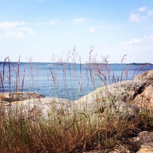 Sommarsol över Saxarfjärden.